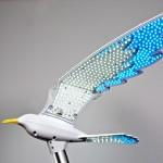 seagull_6